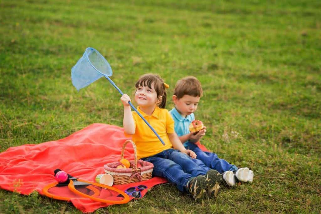 9 Reliable ways to deal with insects at a Picnic