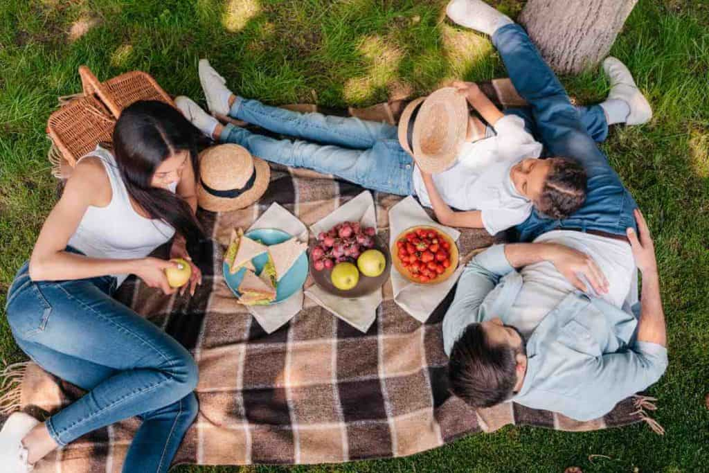 Family Picnic Packing List: What should be on the list