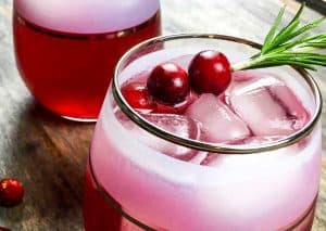 Cranberry Cinnamon Mocktail Spritzer