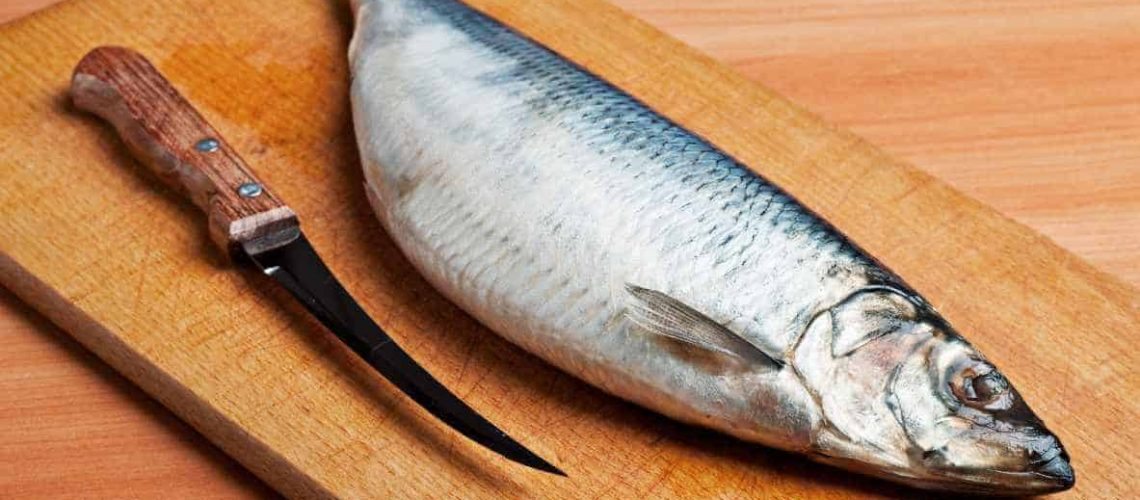Do you need a fillet knife to fillet a fish